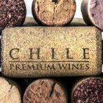 Guía rápidas sobre vinos de Chile